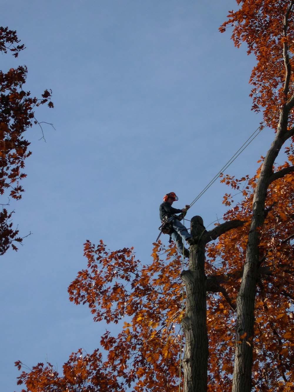 climber1